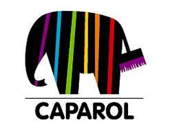Orani Partner Caparol